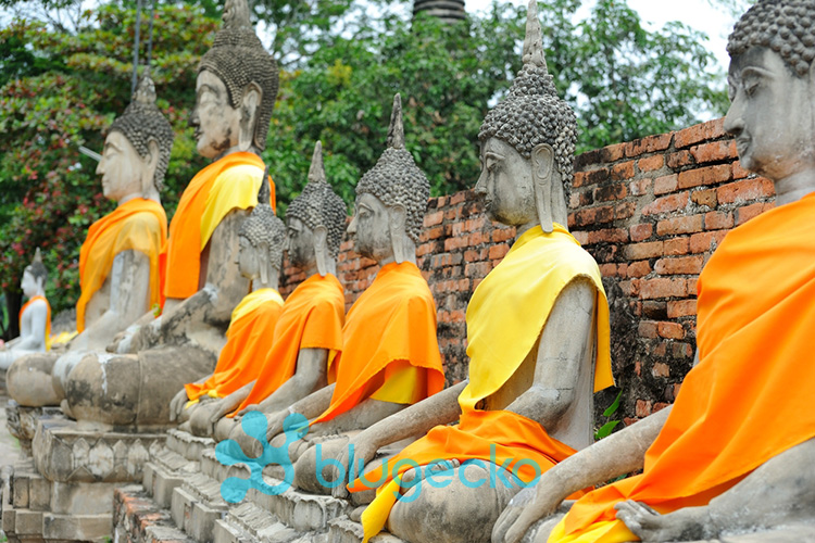 Ayutthaya Day Tour